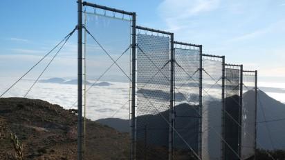 Nebelfänger
