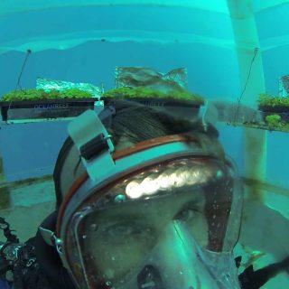 Unterwasser Gartenanlagen