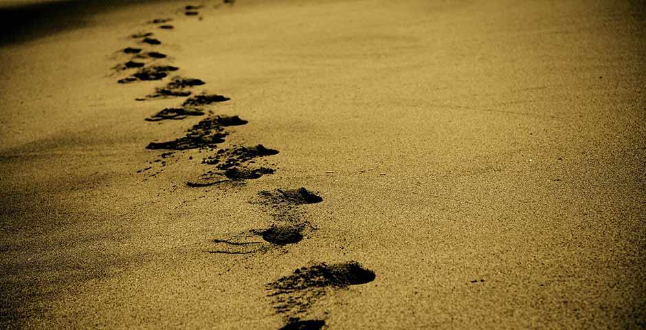 Sandknappheit