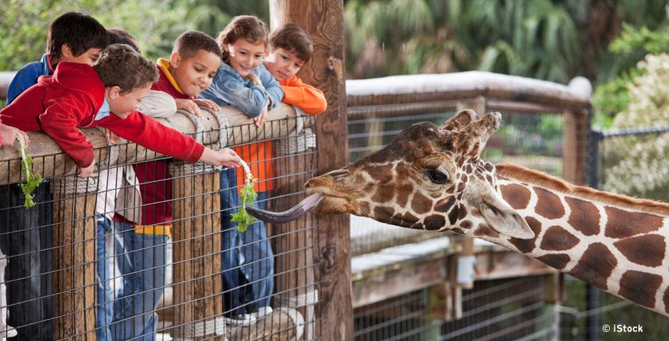 Nachhaltige Zoos