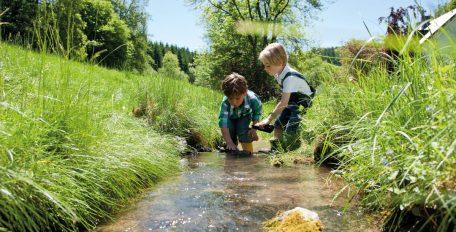 Kleine Kinder spielen in einem Bach. Der Bachlauf ist gesäumt von saftig grüner Wiese.
