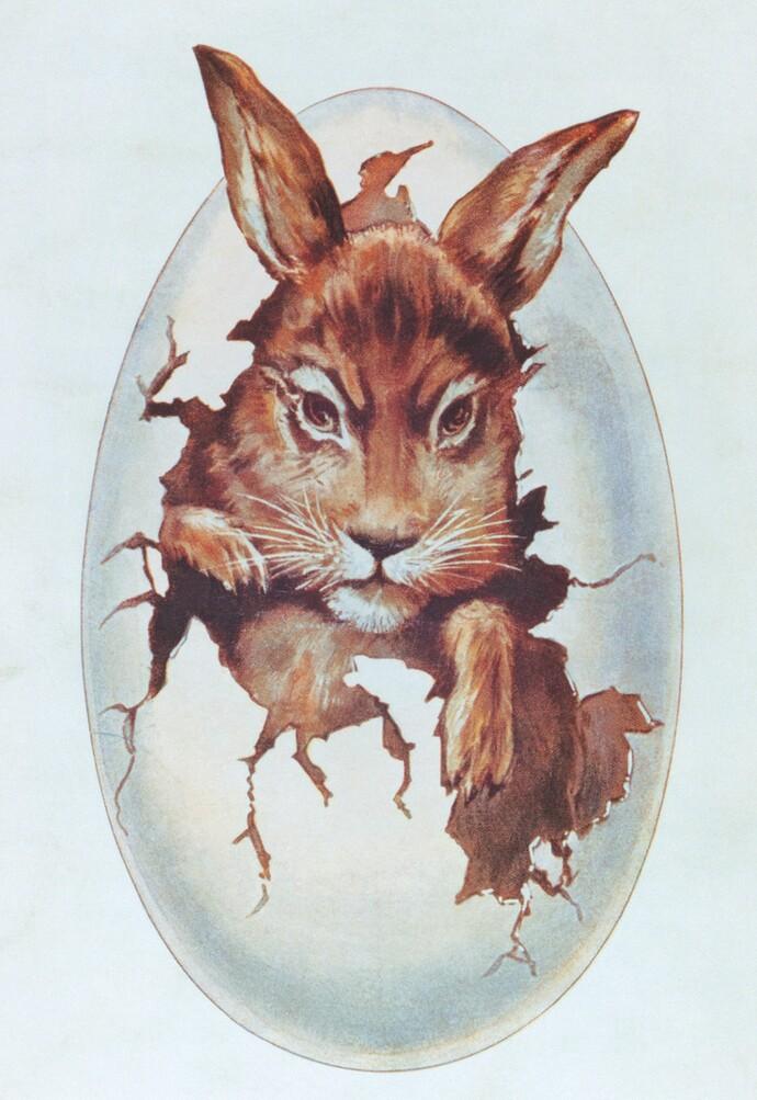 Der frühe Vaillant Hase