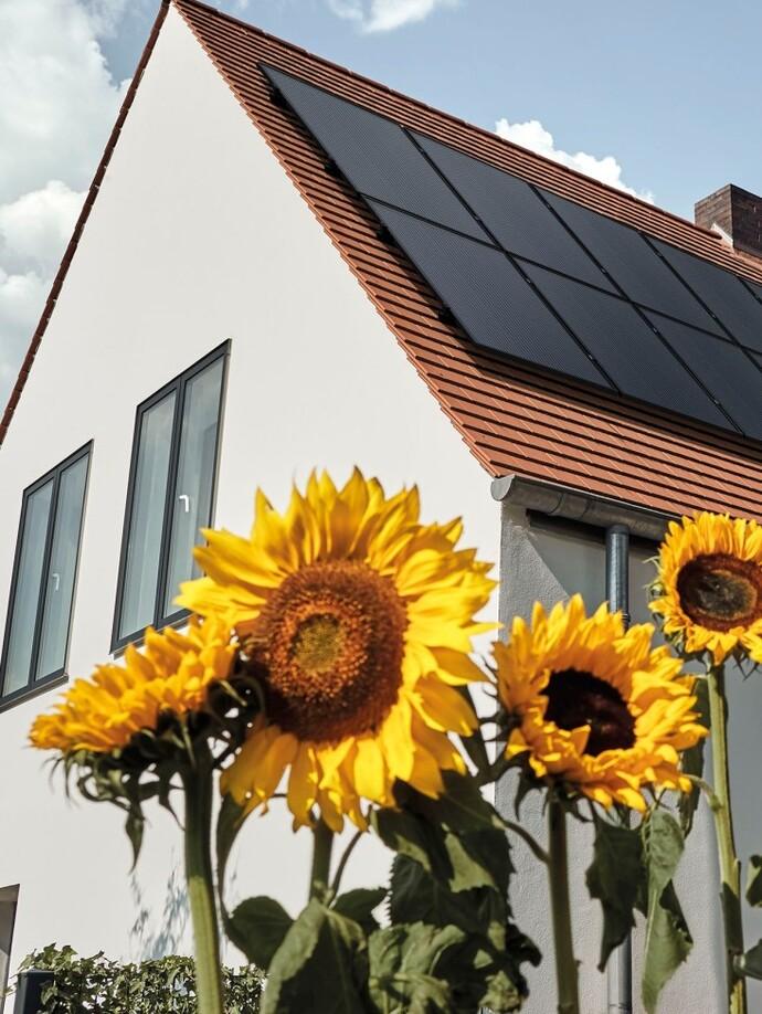Photovoltaiksystem auroPOWER
