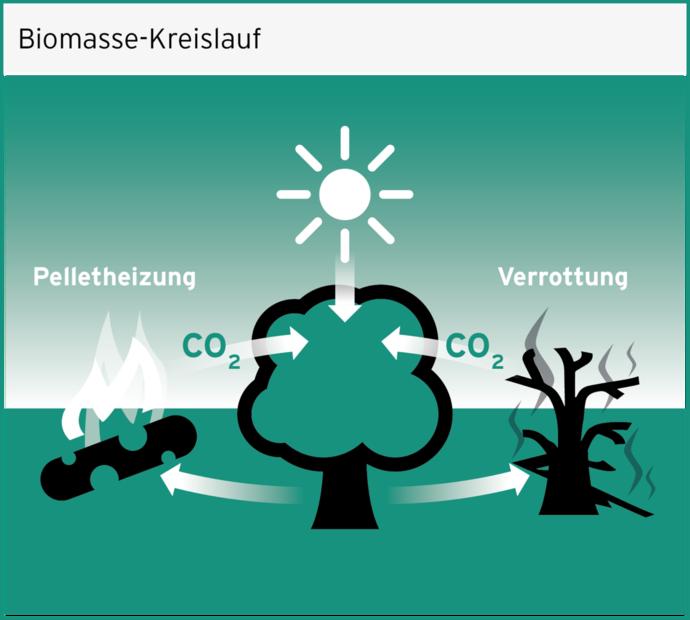 https://www.vaillant.de/vaillant-de/2-heizung-verstehen/pellet-262318-format-flex-height@690@desktop.png