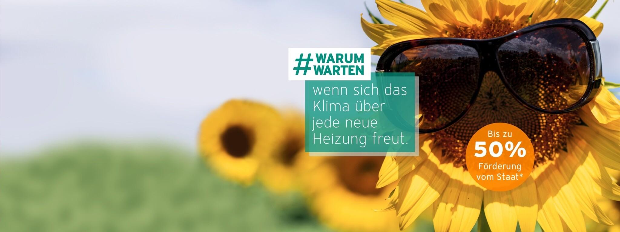 Vaillant #warumwarten Klima Förderung Sommer